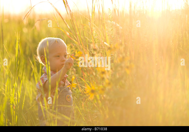 Child in grasses - Stock Image