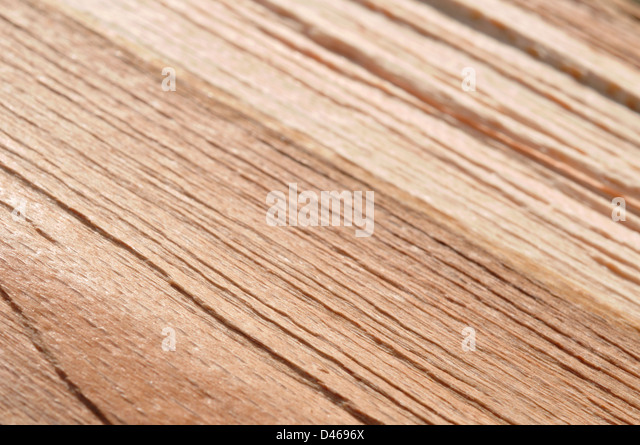 Detail of fresh cut wood in close up selective focus - Stock Image
