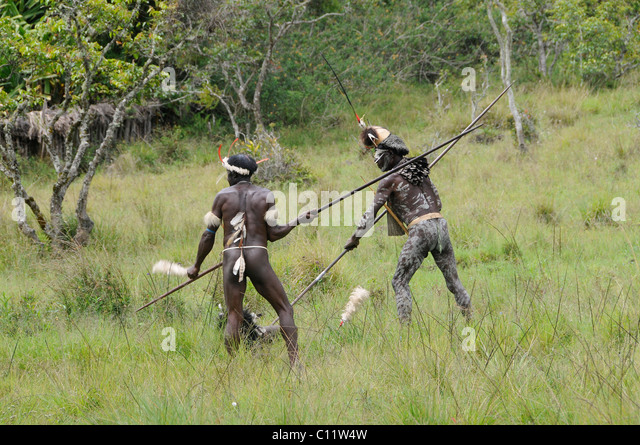 Hostilities by Danis, Yiwika, Baliem Valley, Irian Jaya, Papua New Guinea, Indonesia, Southeast Asia, Asia - Stock Image