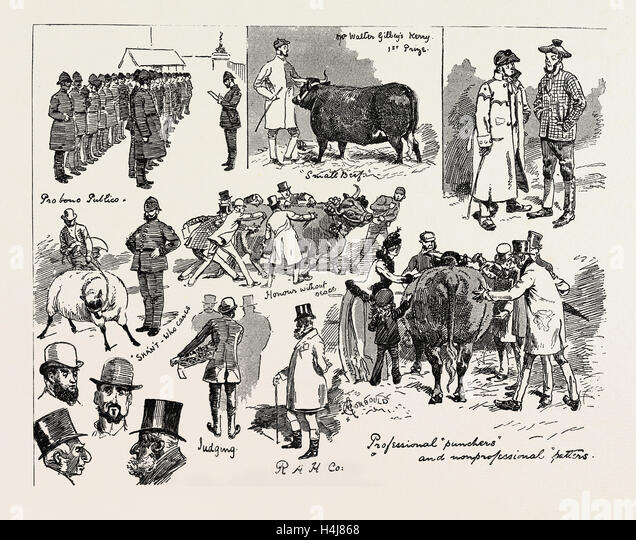 The Smithfield club cattle show at the agricultural Hall, London UK 1889 - Stock Image