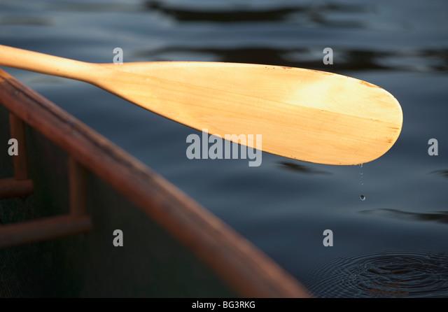 Canoe paddle - Stock Image