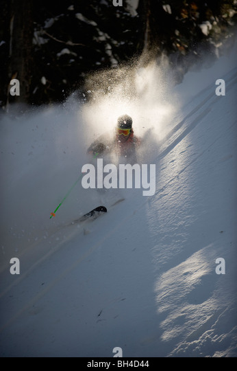 A backcountry skier is buried in billlowing cloud of snow as he skis the trees of the Selkirk Mountains, Canada. - Stock Image