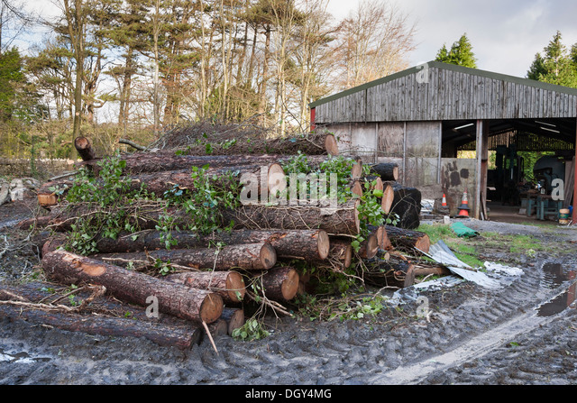 Log mill stock photos log mill stock images alamy for Mill log