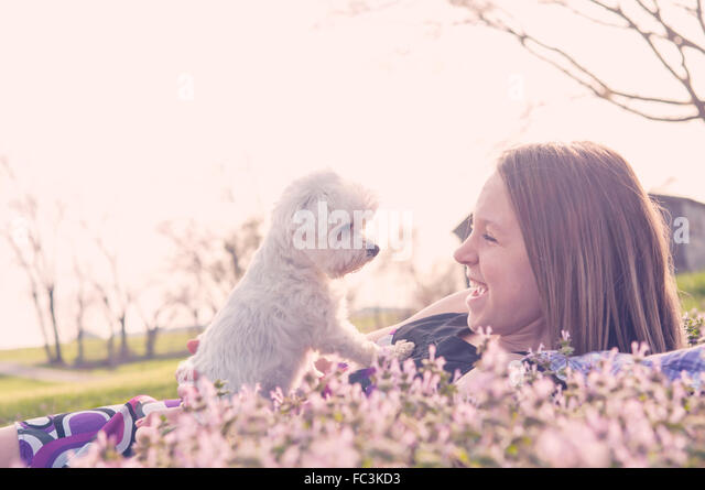 girl and dog in Spring flowers - Stock Image