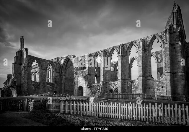 The ruins of Bolton Abbey Priory - Stock-Bilder
