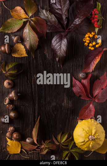Ornament boarder from autumn leaves on old wood as background - Stock Image
