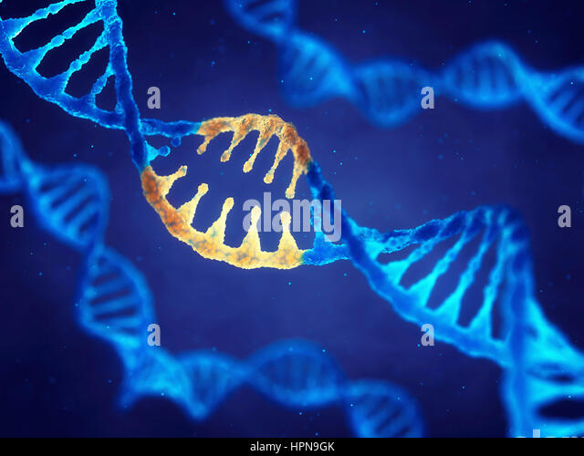 Double helix DNA molecule with modified genes , Correcting mutation by genetic engineering - Stock Image