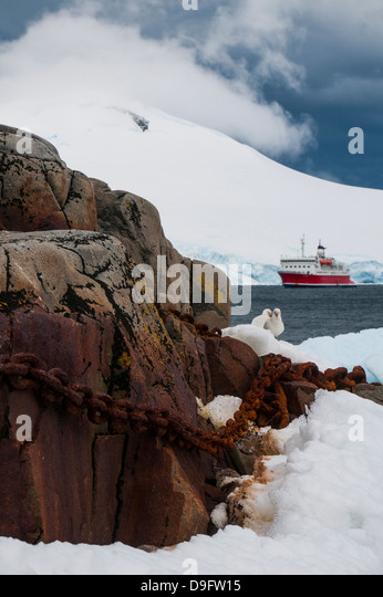 Cruise ship in the glaciers and icebergs, Port Lockroy research station, Antarctica, Polar Regions - Stock-Bilder