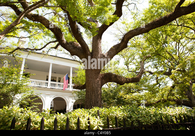 Bed and Breakfast - Stock Image