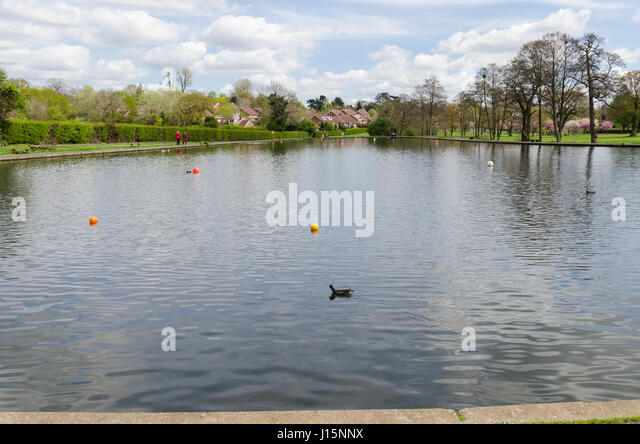 The boating pool at Bournville in Birmingham - Stock Image