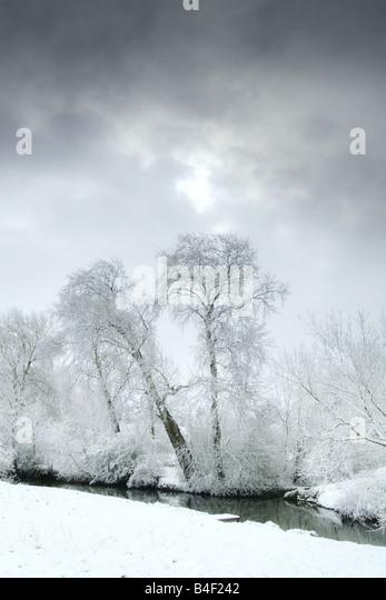 snowy winter scene - Stock Image