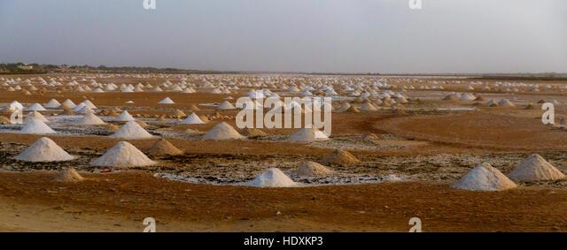 Salt fields, Senegal - Stock Image