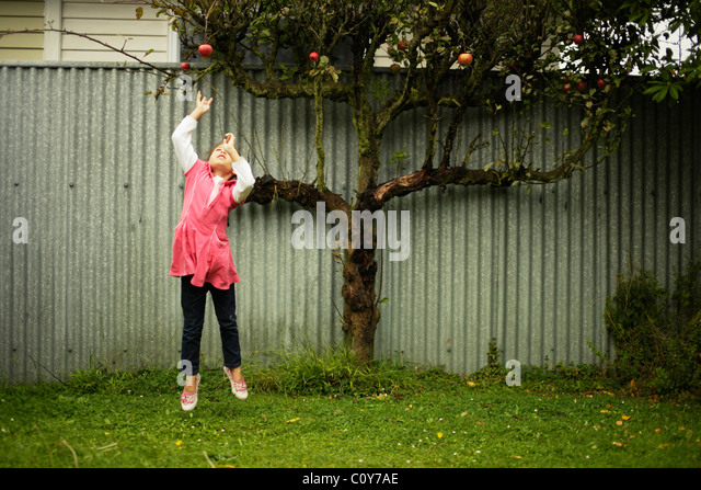 Girl jumps up and tries to grab red apple on tree - Stock Image