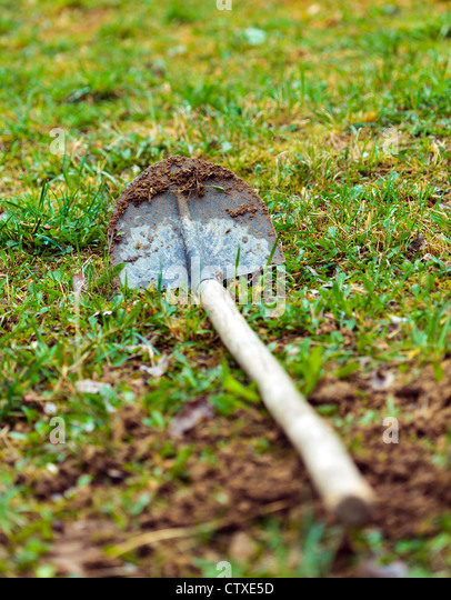 Dirty shovel in grass with selective focus - Stock Image