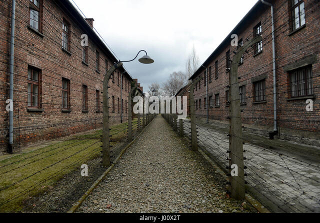 Oswiecim, Poland. 20th Mar, 2017. 20170320 - A gravel walkway flanked by barbed wire fences (once electrified) at - Stock-Bilder