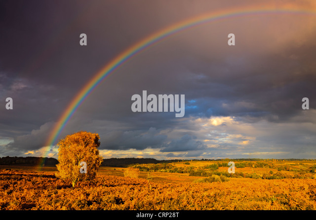 Rainbow over heathland at Mogshade Hill in the New Forest National Park. - Stock-Bilder