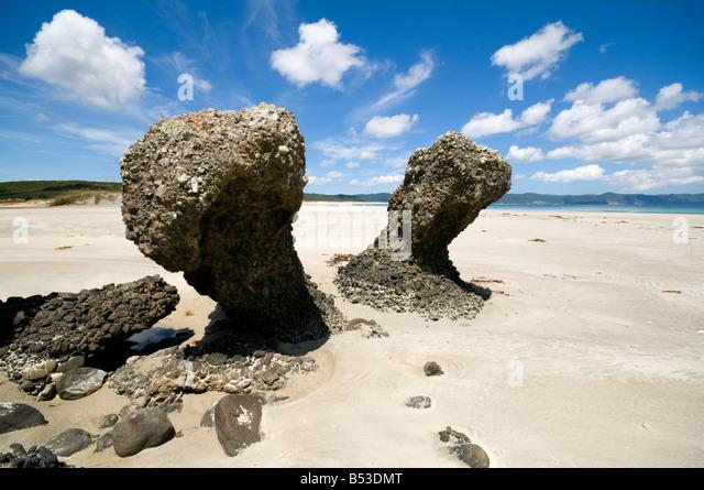 Eroded rocks at Spirits Bay, or Kapowairua, North Island, New Zealand - Stock Image