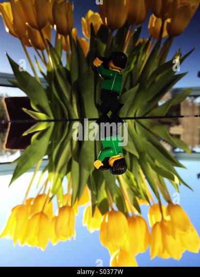 Upside down. - Stock Image