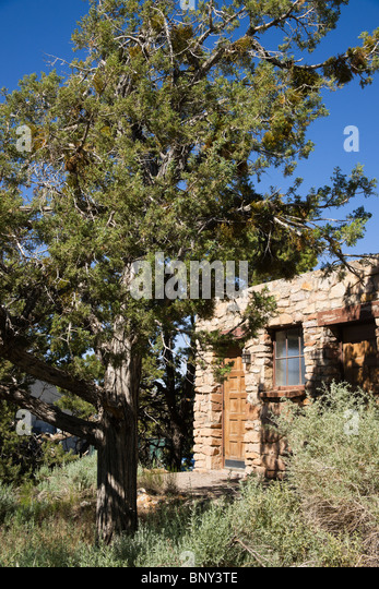 Bright Angel Lodge is one of the most popular accommodations at Grand Canyon National Park. Here you will find rooms and cabins just steps away from the canyon rim and at a great price.