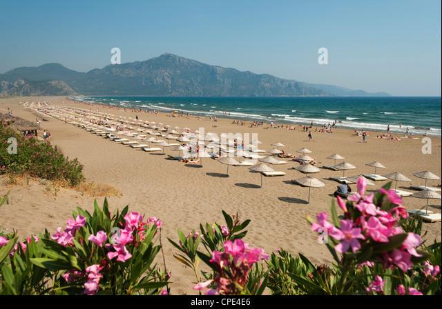 Turtle Beach, near Dalyan, Aegean, Anatolia, Turkey, Asia Minor, Eurasia - Stock Image