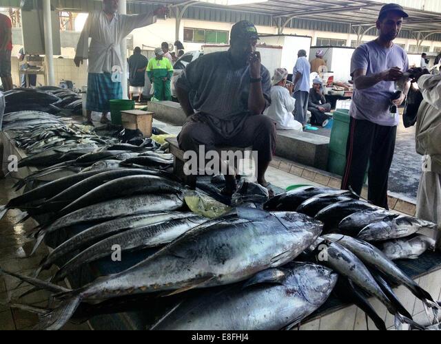 Oman, Muscat, Yellowfin tuna at fish market - Stock Image