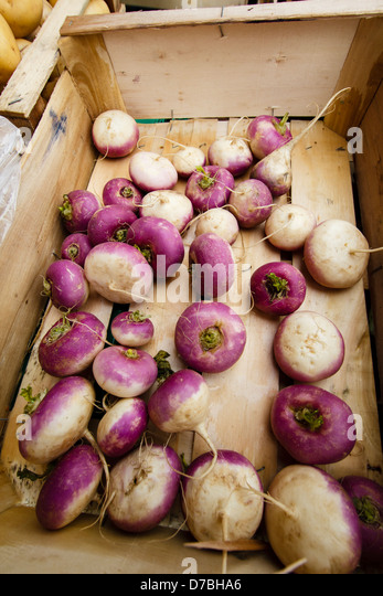 Turnips in the wooden box for sale at the local Toulouse market, France - Stock Image