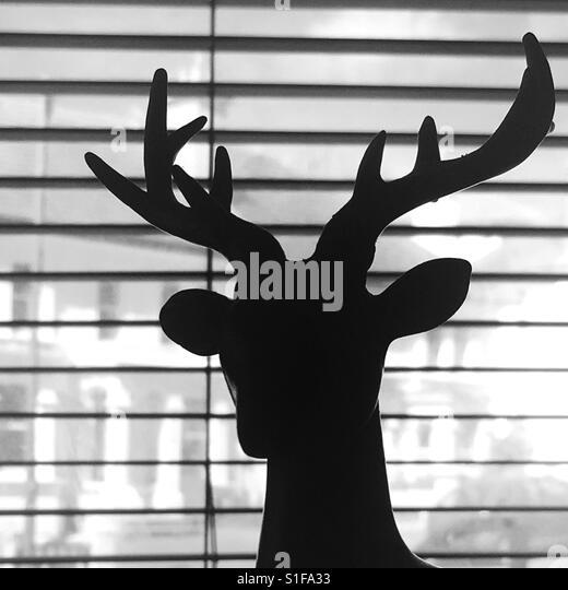Stag silhouette - Stock-Bilder