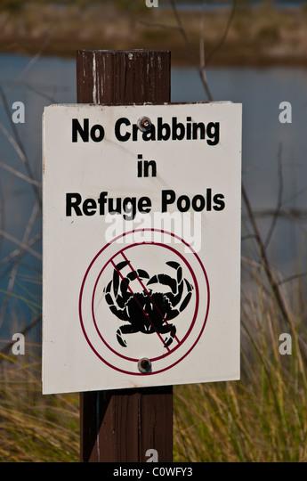 No crabbing sign at pond St Marks National Wildlife Refuge, Florida - Stock Image