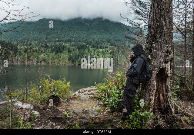 Man wearing waterproof clothes by tree, Buntzen Lake, British Columbia, Canada - Stock Image