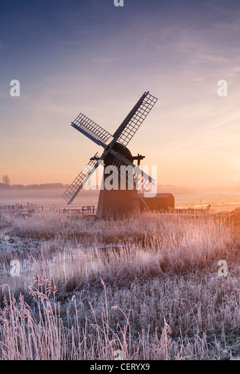 Hoar frosted reeds and morning mist at Herringfleet Windmill. - Stock Image