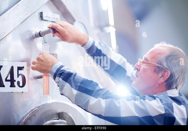 Wine maker tapping wine from tank - Stock Image