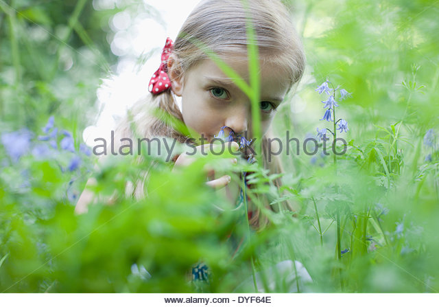 Girl picking wildflowers - Stock Image