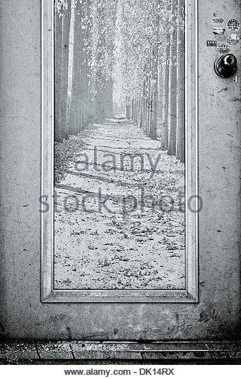A sun-bleached and weathered mural of a sunlight forest adorns an old door, Chungju, South Korea. - Stock Image