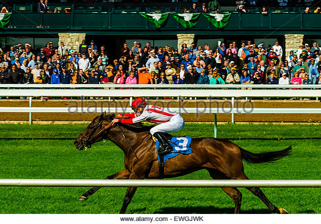 Jockey Julien Leparoux riding Innovation Economy, Horse racing on the turf track at Keeneland  Racecourse, Lexington, - Stock Image