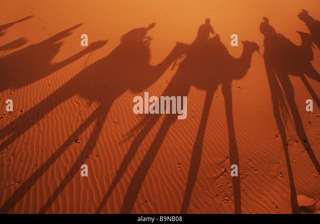 Shadows of camel trekkers in the desert - Stock Image