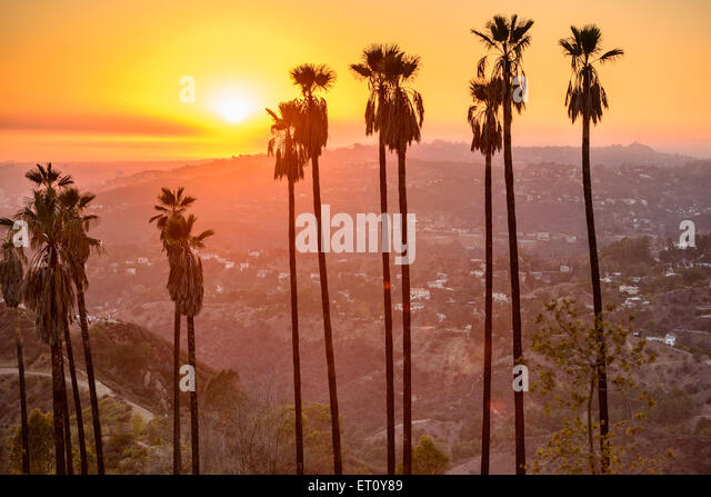 Griffith Park, Los Angeles, California, USA. - Stock Image