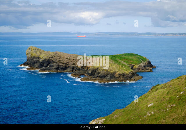 Mullion Island bird sanctuary, Mullion, Cornwall, England, UK - from the South West Coast path - Stock Image