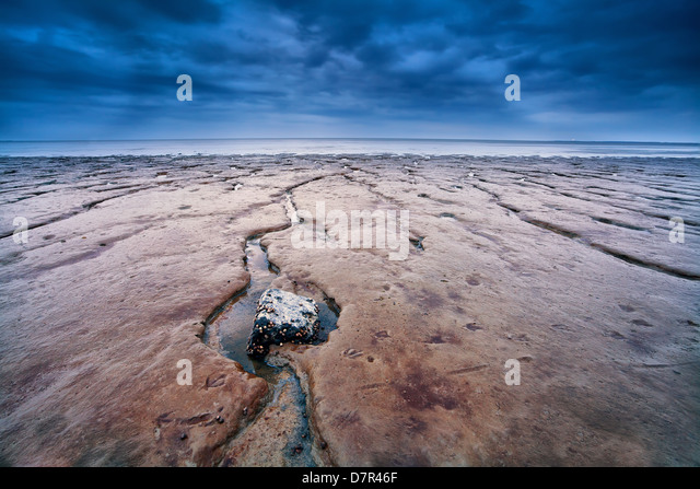 mud on North sea bottom at low tide, Moddergat, the Netherlands - Stock Image