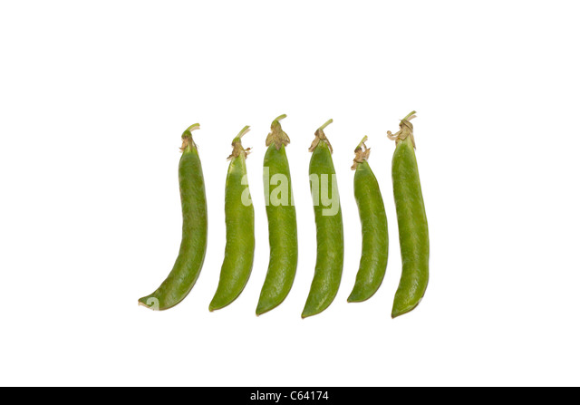 Fresh peas - Stock Image