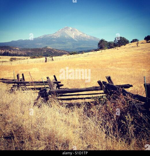 Landscape with Mount Shasta - Stock Image