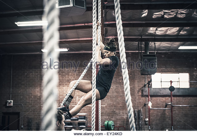 Young woman climbing rope in gym - Stock Image