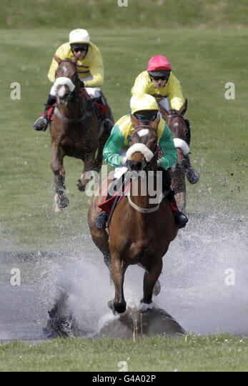 Horse Racing - 2011 Punchestown Festival - Boylesports.com Champion Chase Day - Stock Image