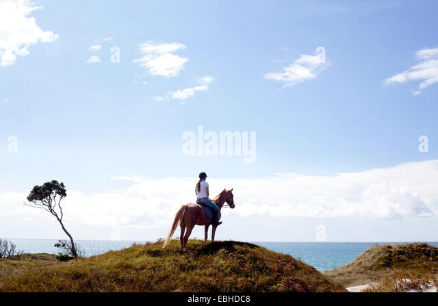Horse rider on hilltop, Pakiri Beach, Auckland, New Zealand - Stock-Bilder