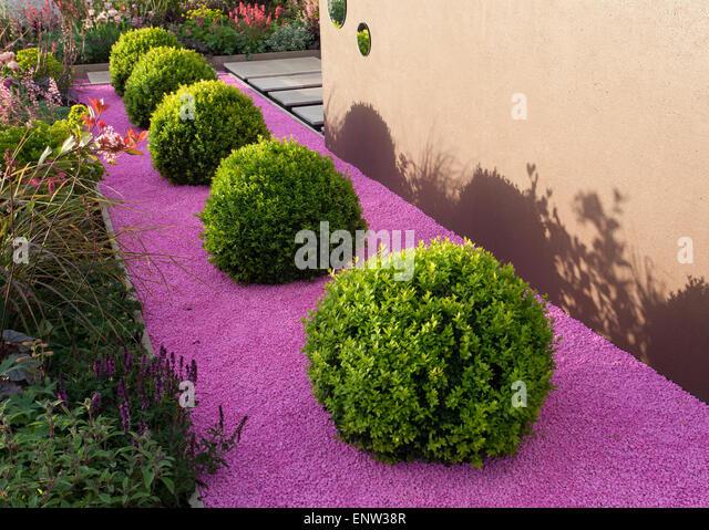 Topiary box stock photos topiary box stock images alamy for Pip probert garden designer