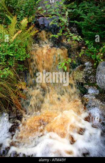 creek waterfall with polluted water. Photo by Willy Matheisl - Stock Image