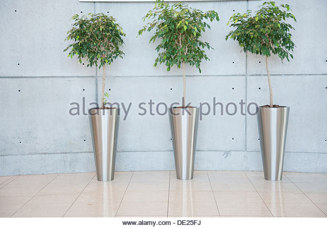 Plants in lobby - Stock Image