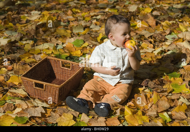 Child sitting on autumn foliage while eating an apple, Muenchen, Bavaria, Germany - Stock-Bilder