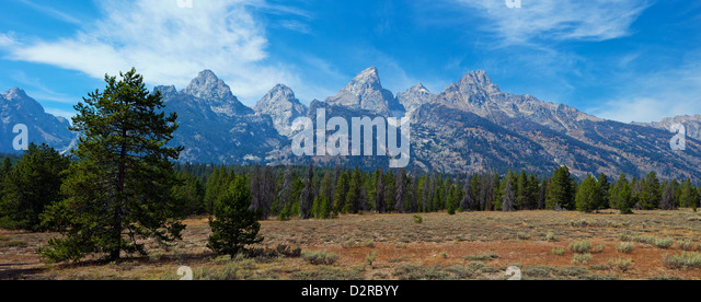 Panoramic view of Cathedral Group from near Teton Glacier Turnout, Grand Teton National Park, Wyoming, USA - Stock Image
