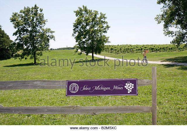 Michigan Fennville Fenn Valley Vineyards and Wine Cellar sign regional wine agriculture viticulture vineyard grapes - Stock Image