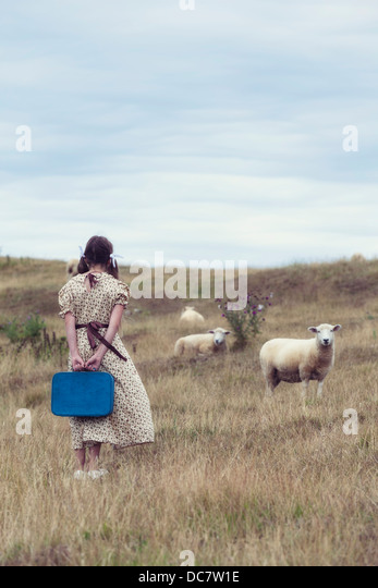 a girl in a vintage dress on a meadow with sheeps - Stock-Bilder